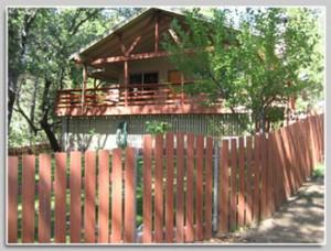 Mia's Sequoia Cabin