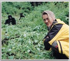 Rwanda w/ mountain gorillas