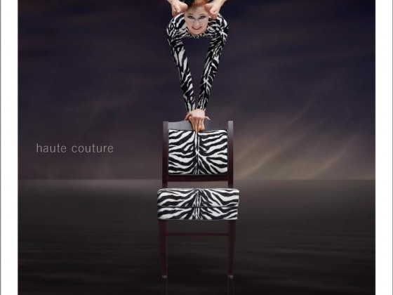 Gasser Chair Ad Zebra