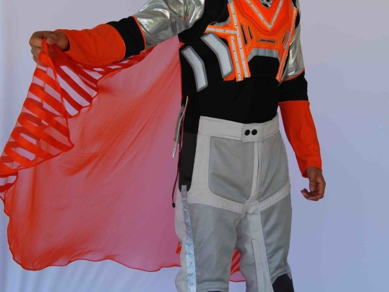 Lotte World Guard